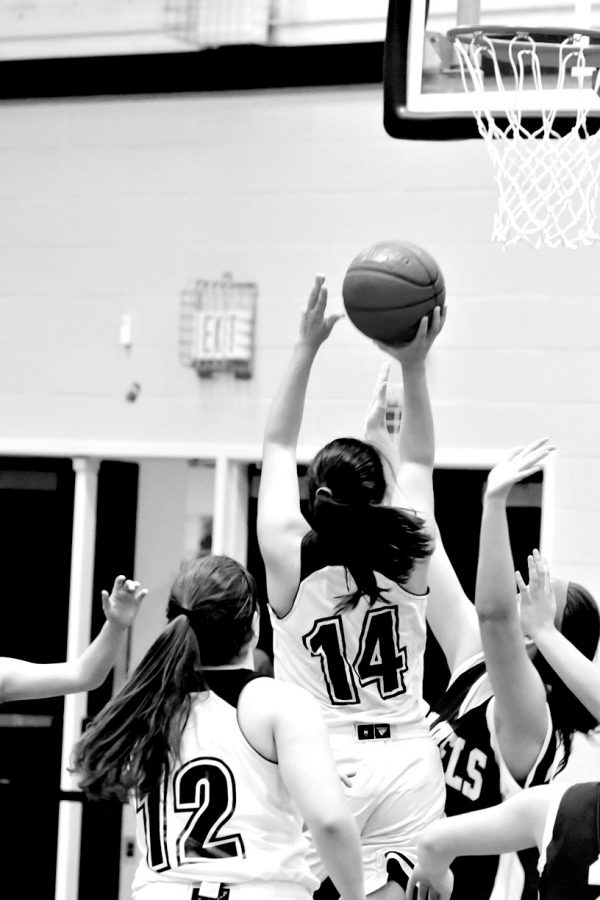Girls Basketball Rebounds With Hard Work